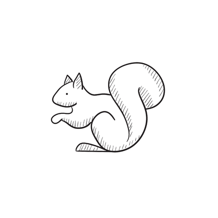 fury: Squirrel vector sketch icon isolated on background. Hand drawn Squirrel icon. Squirrel sketch icon for infographic, website or app.