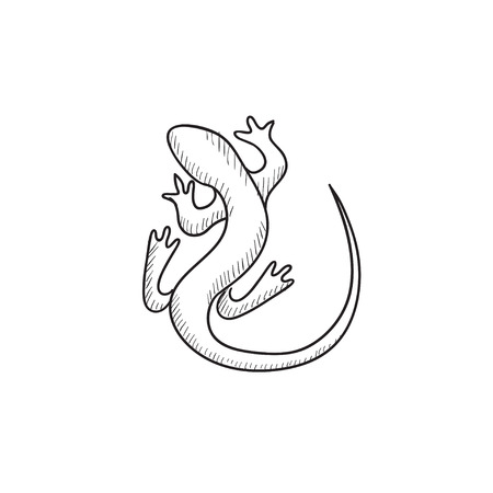 chamaeleo: Lizard vector sketch icon isolated on background. Hand drawn Lizard icon. Lizard sketch icon for infographic, website or app.