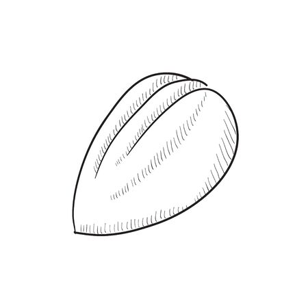Almond vector sketch icon isolated on background. Hand drawn Almond icon. Almond sketch icon for infographic, website or app. Çizim