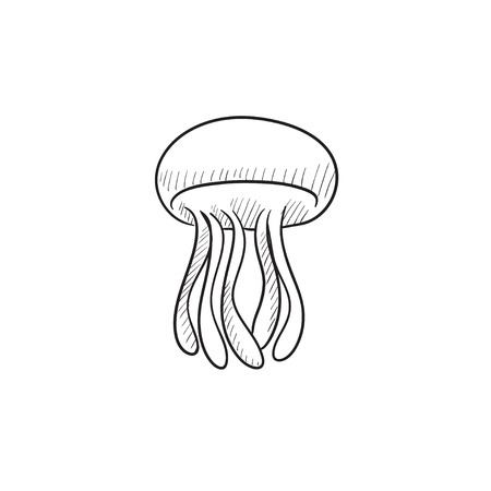 jellyfish vector sketch icon isolated on background hand drawn royalty free cliparts vectors and stock illustration image 57815685
