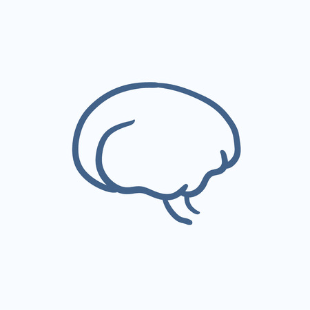 neuronal: Brain vector sketch icon isolated on background. Hand drawn Brain icon. Brain sketch icon for infographic, website or app.