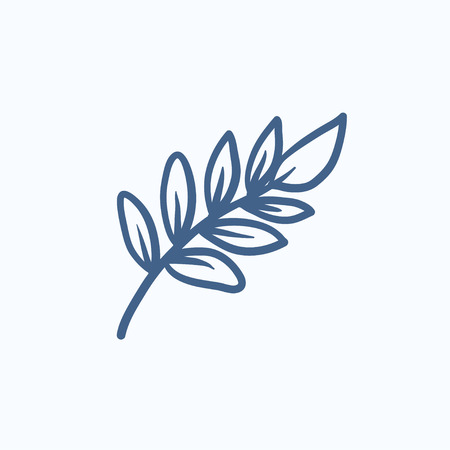 palm branch: Palm branch vector sketch icon isolated on background. Hand drawn Palm branch icon. Palm branch sketch icon for infographic, website or app.