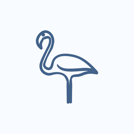 wader: Flamingo vector sketch icon isolated on background. Hand drawn Flamingo icon. Flamingo sketch icon for infographic, website or app. Illustration