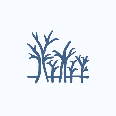 nude outdoors: Tree with bare branches vector sketch icon isolated on background. Hand drawn Tree with bare branches icon. Tree with bare branches sketch icon for infographic, website or app. Illustration