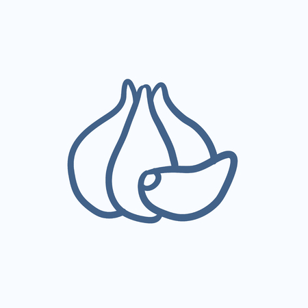 husks: Garlic  vector sketch icon isolated on background. Hand drawn Garlic  icon. Garlic  sketch icon for infographic, website or app.