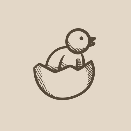 sketch out: Chick peeking out of egg shell sketch icon for web, mobile and infographics. Hand drawn chick icon. Chick vector icon. Chick icon isolated on white background.