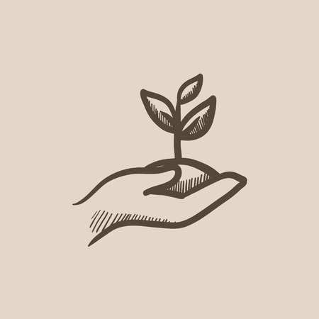 seedlings: Hands holding seedling in soil vector sketch icon isolated on background. Hand drawn Hands holding seedling in soil icon. Hands holding seedling in soil sketch icon for infographic, website or app.