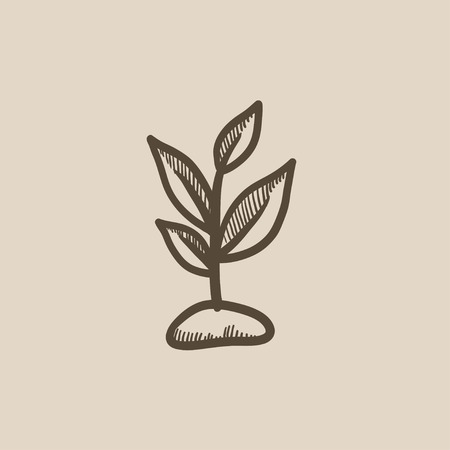 fertile: Sprout vector sketch icon isolated on background. Hand drawn Sprout icon. Sprout sketch icon for infographic, website or app. Illustration