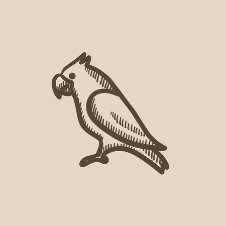 Parrot vector sketch icon isolated on background. Hand drawn Parrot icon. Parrot sketch icon for infographic, website or app.