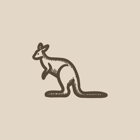 pouch: Kangaroo vector sketch icon isolated on background. Hand drawn Kangaroo icon. Kangaroo sketch icon for infographic, website or app. Illustration