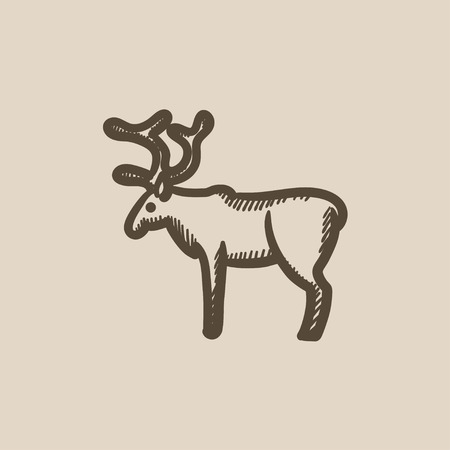 horny: Deer vector sketch icon isolated on background. Hand drawn Deer icon. Deer sketch icon for infographic, website or app.