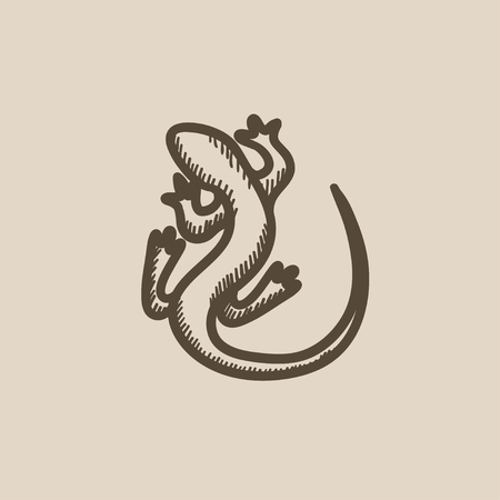 veiled: Lizard vector sketch icon isolated on background. Hand drawn Lizard icon. Lizard sketch icon for infographic, website or app.