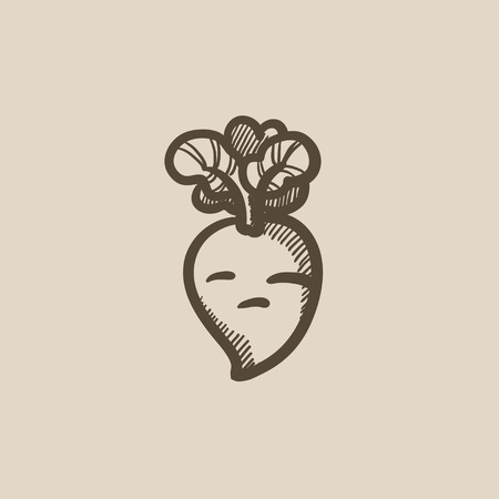 beet: Beet vector sketch icon isolated on background. Hand drawn Beet icon. Beet sketch icon for infographic, website or app.