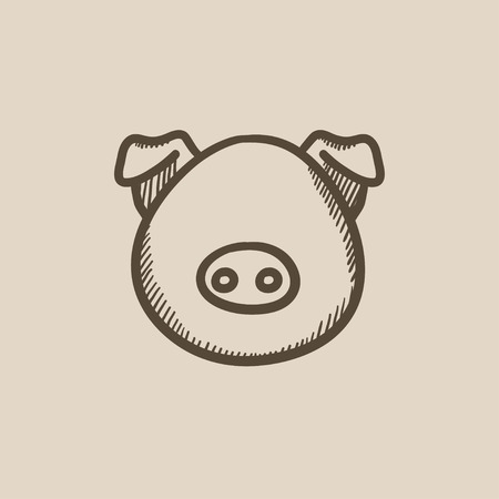 pigling: Pig head vector sketch icon isolated on background. Hand drawn Pig head icon. Pig head sketch icon for infographic, website or app.