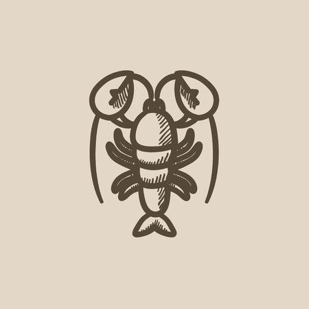 pincer: Lobster vector sketch icon isolated on background. Hand drawn Lobster icon. Lobster sketch icon for infographic, website or app.