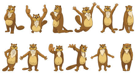 full length: Set of cute full length beavers standing with open arms, giving thumbs up, shrugging shoulders, waving hand, giving five, jumping, praying. Vector illustration isolated on white background.