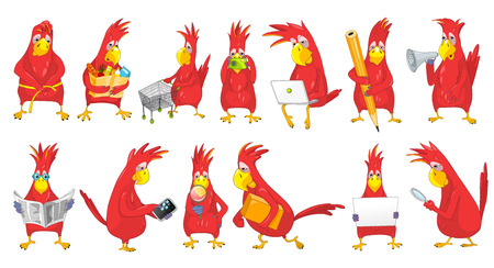 mesure: Set of funny parrots engaged in such matters as shopping, measuring waist, working on laptop, reading newspaper, using phone, megaphone, magnifier. Vector illustration isolated on white background.