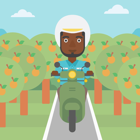 orchard: An african-american young man riding a scooter on the asphalt road through the orchard. Young man in helmet driving a scooter. Vector flat design illustration. Square layout..