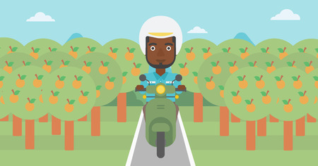 orchard: An african-american young man riding a scooter on the asphalt road through the orchard. Young man in helmet driving a scooter. Vector flat design illustration. Horizontal  layout..