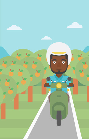 orchard: An african-american young man riding a scooter on the asphalt road through the orchard. Young man in helmet driving a scooter. Vector flat design illustration. Vertical layout..