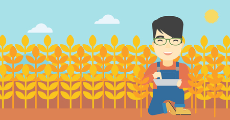 asian farmer: An asian farmer checking plants on a wheat field. Farmer working on a digital tablet in a field. Vector flat design illustration. Horizontal layout.