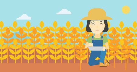 checking: An asian female farmer checking plants on a wheat field. Farmer working on a digital tablet in a field. Vector flat design illustration. Horizontal layout.