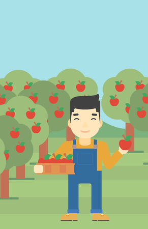 asian farmer: An asian farmer holding a box with apples in one hand and an apple in another on a background of garden with trees. Farmer collecting apples. Vector flat design illustration. Vertical layout. Illustration