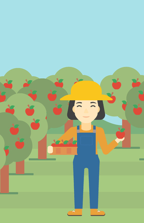 vertical garden: An asian female farmer holding a box with apples in one hand and an apple in another on a background of garden with trees. Farmer collecting apples. Vector flat design illustration. Vertical layout. Illustration