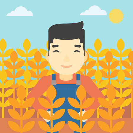 An asian farmer standing in a wheat field. Young farmer working in a weat field. Vector flat design illustration. Square layout. 向量圖像