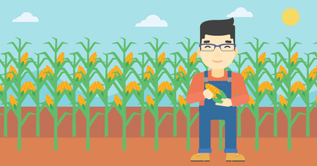 asian farmer: An asian farmer holding a corn cob. Young farmer standing on the background of corn field. Vector flat design illustration. Horizontal layout. Illustration