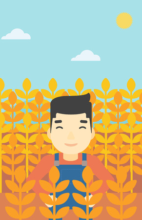 An asian farmer standing in a wheat field. Young farmer working in a weat field. Vector flat design illustration. Vertical layout.