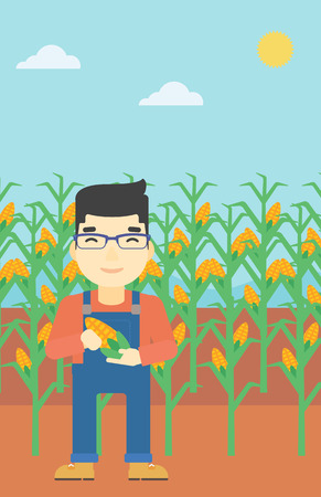 corn field: An asian farmer holding a corn cob. Young farmer standing on the background of corn field. Vector flat design illustration. Vertical layout.