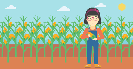 corn field: An asian female farmer holding a corn cob. Young farmer standing on the background of corn field. Vector flat design illustration. Horizontal layout.
