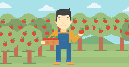 asian farmer: An asian farmer holding a box with apples in one hand and an apple in another on a background of garden with trees. Farmer collecting apples. Vector flat design illustration. Horizontal layout.