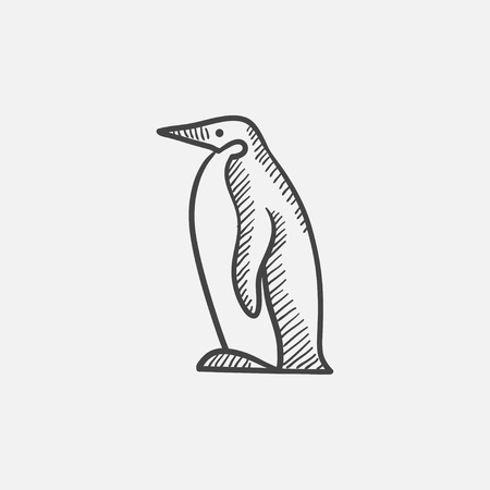 Penguin sketch icon for web, mobile and infographics. Hand drawn vector isolated icon.