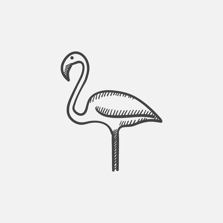 wader: Flamingo sketch icon for web, mobile and infographics. Hand drawn vector isolated icon. Illustration