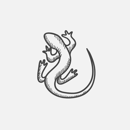 chamaeleo: Lizard sketch icon for web, mobile and infographics. Hand drawn vector isolated icon.