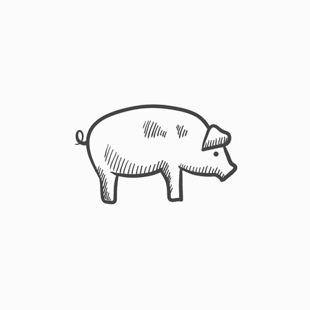 豚は、web、モバイルのアイコンとインフォ グラフィックをスケッチします。手描き下ろし豚のアイコン。豚のベクター アイコン。豚のアイコンは、  イラスト・ベクター素材