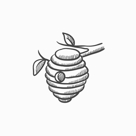 honeyed: Bee hive sketch icon for web, mobile and infographics. Hand drawn bee hive icon. Bee hive vector icon. Bee hive icon isolated on white background.