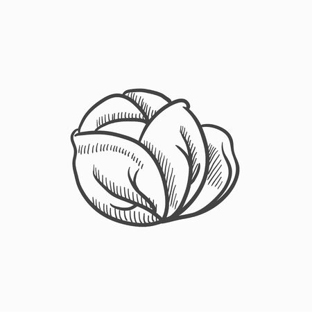 Cabbage vector sketch icon isolated on background. Hand drawn Cabbage icon. Cabbage sketch icon for infographic, website or app. Çizim