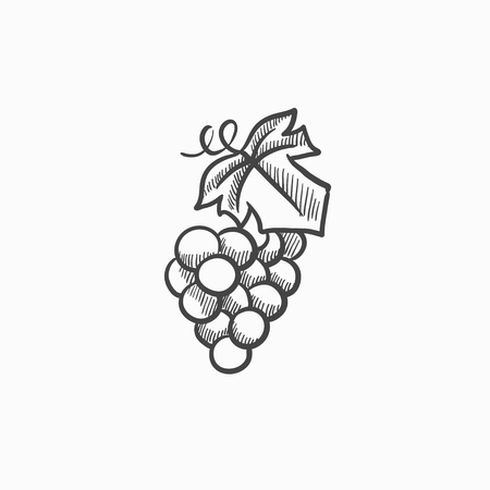 Bunch of grapes vector sketch icon isolated on background. Hand drawn Bunch of grapes icon. Bunch of grapes sketch icon for infographic, website or app.  イラスト・ベクター素材