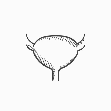 cystitis: Urinary bladder vector sketch icon isolated on background. Hand drawn Urinary bladder icon. Urinary bladder sketch icon for infographic, website or app. Illustration