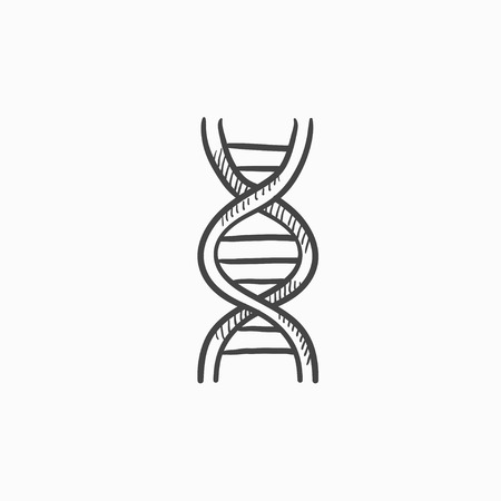 DNA vector sketch icon isolated on background. Hand drawn DNA icon. DNA sketch icon for infographic, website or app. Illustration