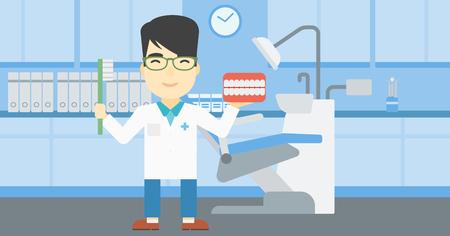 Un jeune dentiste asiatique masculin tenant modèle de mâchoire dentaire et une brosse à dents dans le bureau de médecin. Homme dentiste montrant le modèle de la mâchoire dentaire et brosse à dents. Vector design plat illustration. Présentation horizontale. Banque d'images - 61302831