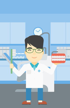 An asian young male dentist holding dental jaw model and a toothbrush in doctor office. Male dentist showing dental jaw model and toothbrush. Vector flat design illustration. Vertical layout.
