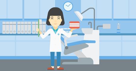 Azjatykci młody żeński dentysta trzyma stomatologicznego szczęka modela i toothbrush w doktorskim biurze. Żeński dentysta pokazuje stomatologicznego szczęka modela i toothbrush. Ilustracja wektorowa Płaska konstrukcja. Układ poziomy. Ilustracje wektorowe