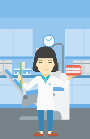 An asian young female dentist holding dental jaw model and a toothbrush in doctor office. Female dentist showing dental jaw model and toothbrush. Vector flat design illustration. Vertical layout.