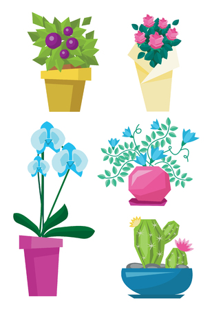 variety: Variety of colorful flowers such as cactus, roses, orchid and other flowers vector flat design illustration isolated on white background.