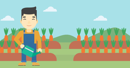 asian farmer: An asian farmer holding a watering can. Farmer watering carrots. Farmer standing on the background of carrots growing on field. Horizontal layout.