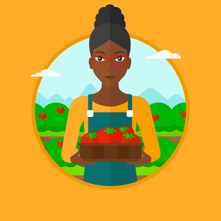 happy farmer: An african-american farmer holding a box with tomatoes. Happy farmer standing on the background of field with bushes of tomatoes. Vector flat design illustration in the circle isolated on background. Illustration